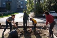 tree-planting-10-of-26