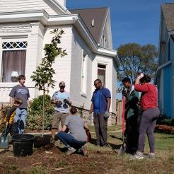 tree-planting-16-of-26
