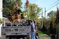 tree-planting-18-of-26