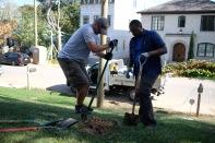 tree-planting-22-of-26