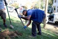tree-planting-23-of-26