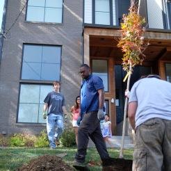 tree-planting-24-of-26